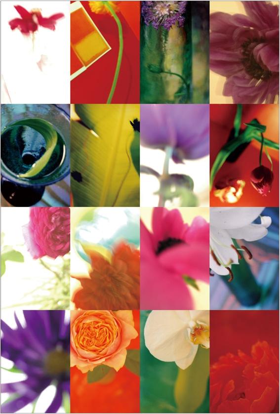 postcard_2010