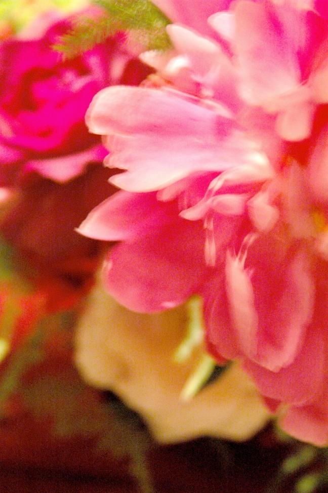 love flower 022
